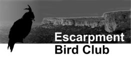 Escarpment Bird Club